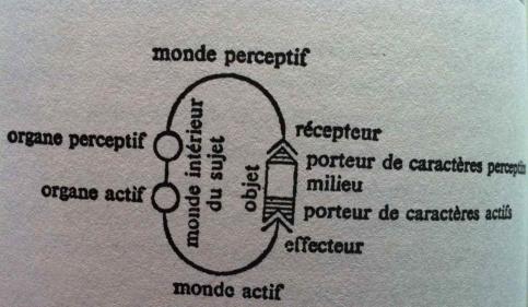 Umwelt Tique